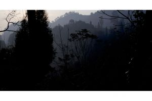 landscape_03.jpg